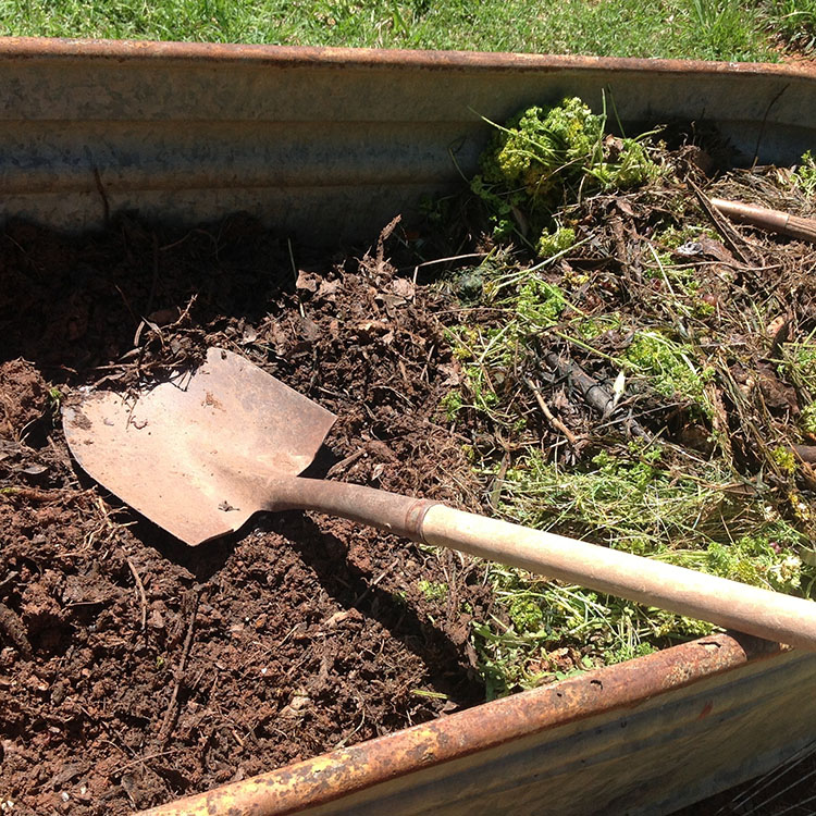 The Dirt on Compost